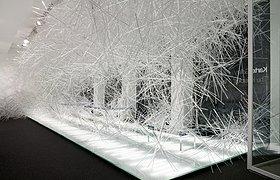 隐形世界展览