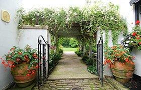 美国地中海花园住宅景观