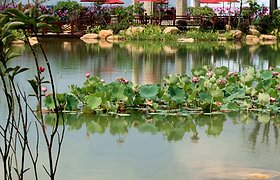 光耀—惠州荷兰小城
