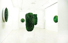 Makoto Azuma的植物雕塑展览