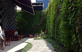 墨西哥Tori Tori 餐厅