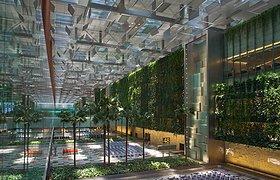 新加坡Changi Airport's Terminal 3