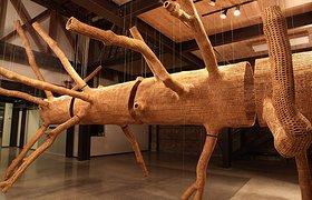 中空艺术品——远古大树的生命以另一种形式呈现