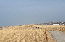 自然沙丘般的大海防线工程