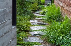 2014 ASLA 住宅景观设计荣誉奖——芝加哥城某住宅花园