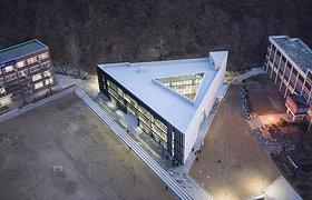 韩国三角形学校