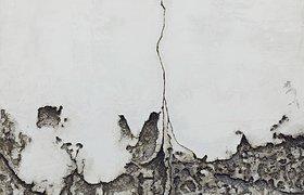迷牆——应天齐个展