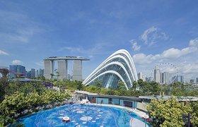 新加坡滨海湾儿童花园