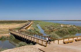 葡萄牙塔霍滨河带状公园