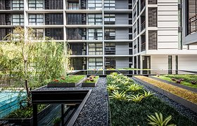 泰国Mode 61公寓花园