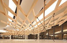 新加坡科技大学的网状结构装置