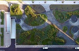 荷兰曼德拉公园