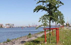 荷兰Oever公园
