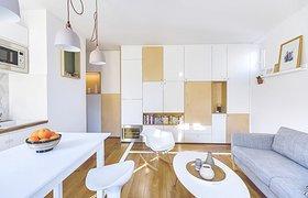 法国巴黎30平米雅致公寓
