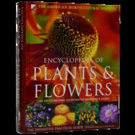 Plants & Flowers 植物和花卉 花卉种类全科